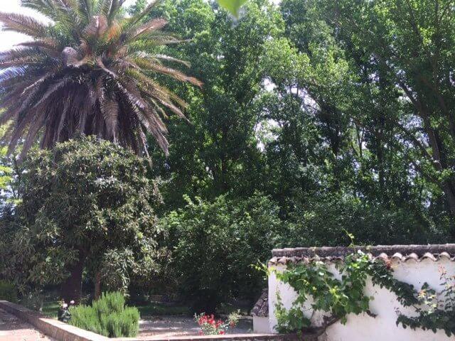 J-0159-Casa-de-Campo-in-Ronda-El-Llano-de-la-Cruz-01