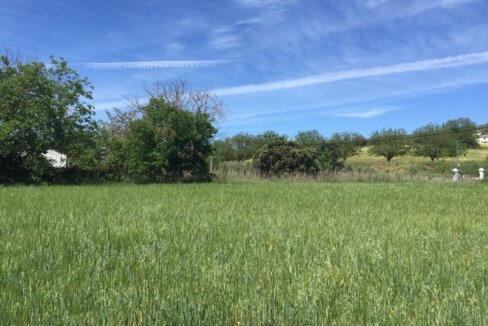 J-0159-Casa-de-Campo-in-Ronda-El-Llano-de-la-Cruz-10