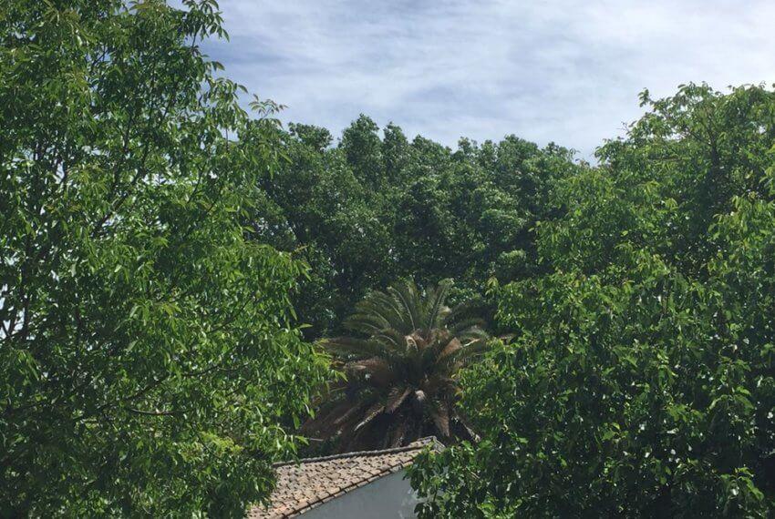 J-0159-Casa-de-Campo-in-Ronda-El-Llano-de-la-Cruz-11