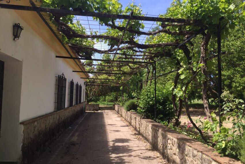 J-0159-Casa-de-Campo-in-Ronda-El-Llano-de-la-Cruz-36