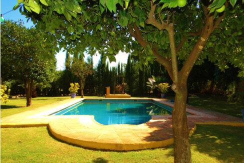 Pferdeparadies_Polo-Club_Finca_Andalusien-05