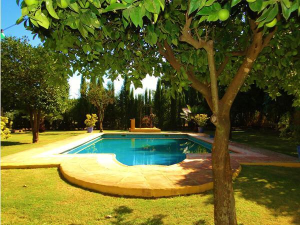 Pferdeparadies_Polo-Club_Finca_Andalusien-05