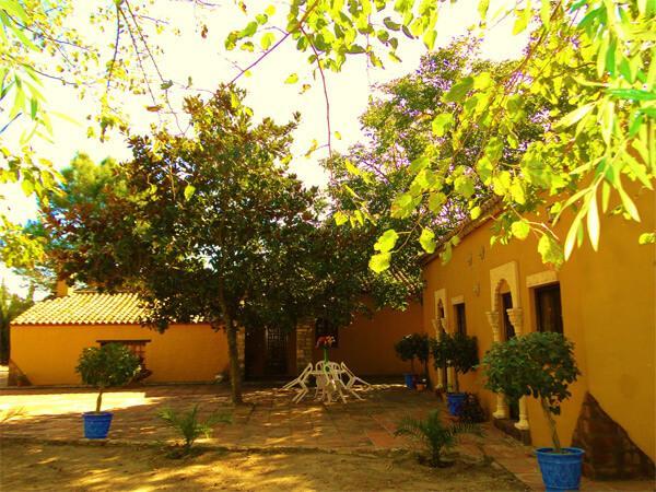 Pferdeparadies_Polo-Club_Finca_Andalusien-09