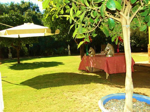 Pferdeparadies_Polo-Club_Finca_Andalusien-11
