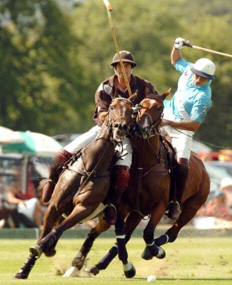 Pferdeparadies_Polo-Club_Finca_Andalusien-16