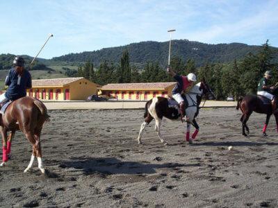 Pferdeparadies_Polo-Club_Finca_Andalusien
