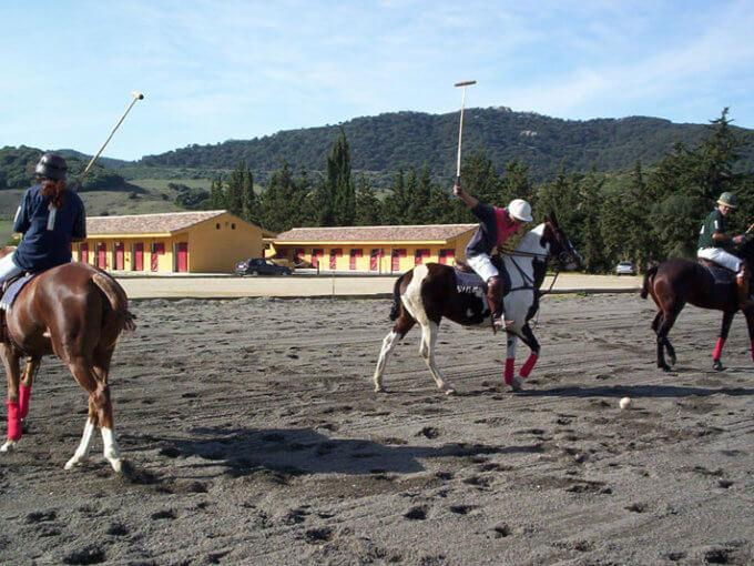 Pferdeparadies_Polo-Club_Finca_Andalusien