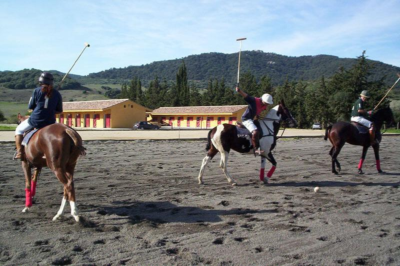 Pferdeparadies_Polo-Club_Finca_Andalusien-17