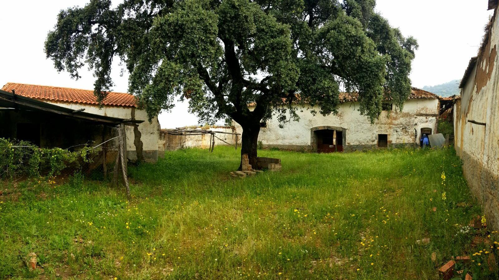 Schöne Finca mit Kork- und Kastanienbäumen